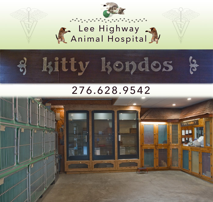 Kitty Kondos The Cats Annex Lee Highway Animal Hospital