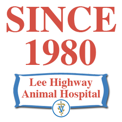 since-1980-logo2