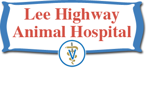 Lee Highway Animal Hospital – Abingdon, VA – Small Animal Medicine and Surgery