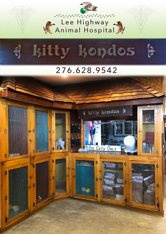 Kitty Kondos - The Cat's Annex - Lee Highway Animal Hospital - Abingdon, VA